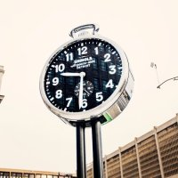 Shinola: The Real History of America's Most Authentic Fake Brand