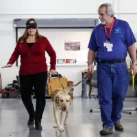 Dogs are teaching humans to be better bosses in this training program